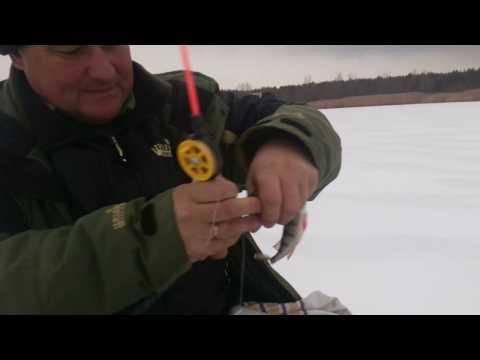 принципы рыбака