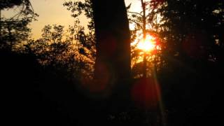 Sophie Ellis-Bextor-Wrong Side of the Sun