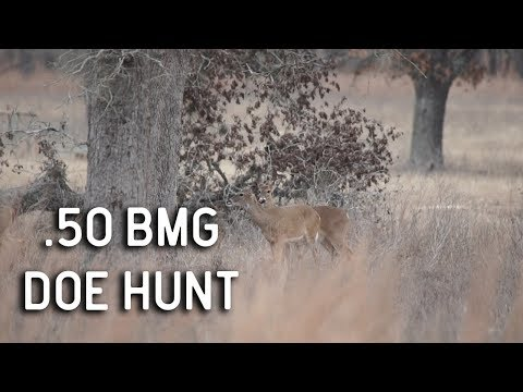 50 BMG Versus Whitetail Deer Hunting