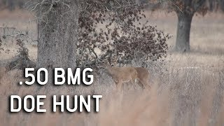 .50 BMG Versus Whitetail Deer Hunting