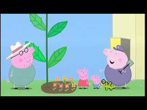 Peppa pig español latinoamericano - 6 episodios