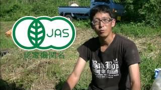 有機野菜と無農薬野菜の違い thumbnail