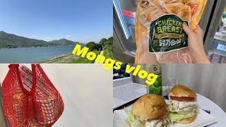 [Vlog] 자취생 마트브이로그| 노브랜드 |토마토 닭…