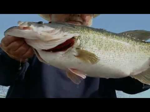 TAKE ME FISHING 101: Don't Mess with Texas Fish [Official]