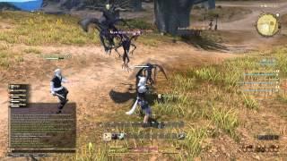 Final Fantasy Xiv : A Realm Reborn - First Boss And Pugilist Class (beta)