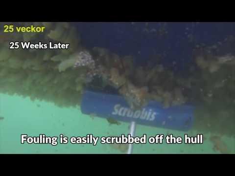 Fouling Test for AquaMarine Hull