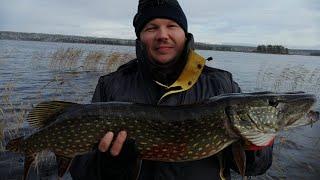 Я её поймал крупная щука Зимняя рыбалка big fish pike