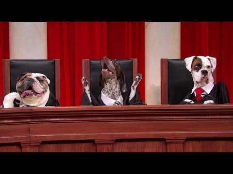 Dorsey v. United States: Oral Argument - April 17, 2012