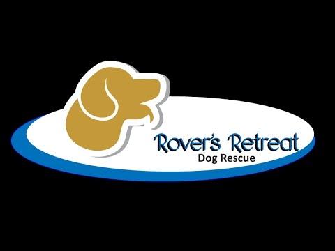 Rover's Retreat Dog Rescue Live Stream