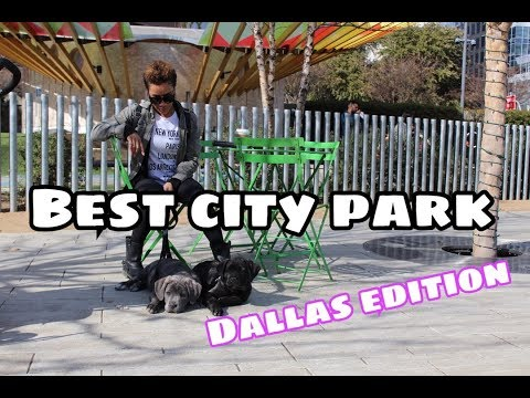 The Best things to do in Dallas | The Best park ever