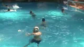 Armada water polo club Armenia