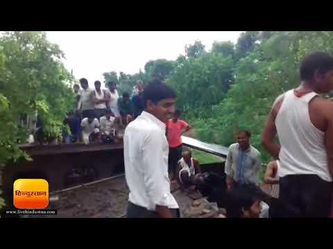 UP NEWS II जंगली सुअर ने गांव पर बोला हमला, कई लोगों को किया घायल