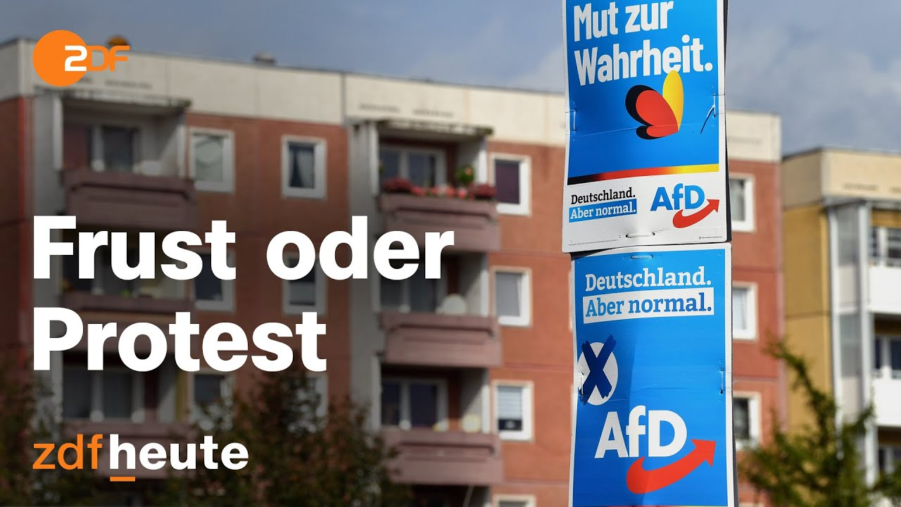 Download Warum in Thüringen so viele AfD wählen