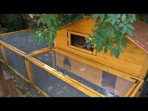 fabriquer un clapier en bois pour lapin nain doovi. Black Bedroom Furniture Sets. Home Design Ideas