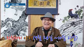 2020년 천칭자리 별자리운세 점성술 경자년 토정비결 사주 운세