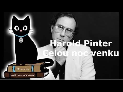 Harold Pinter - Celou noc venku (Mluvené slovo CZ)