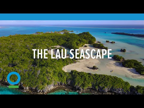 The Lau Seascape   Conservation International (CI)