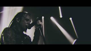 HELLYEAH - Love Falls (Live Video)