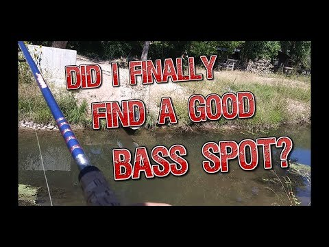 Epic Deals And Ned Rigs - Ditch Fishing Bass