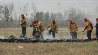 Прямая трансляция крупномасштабных учений по тушению лесных пожаров на Камчатке