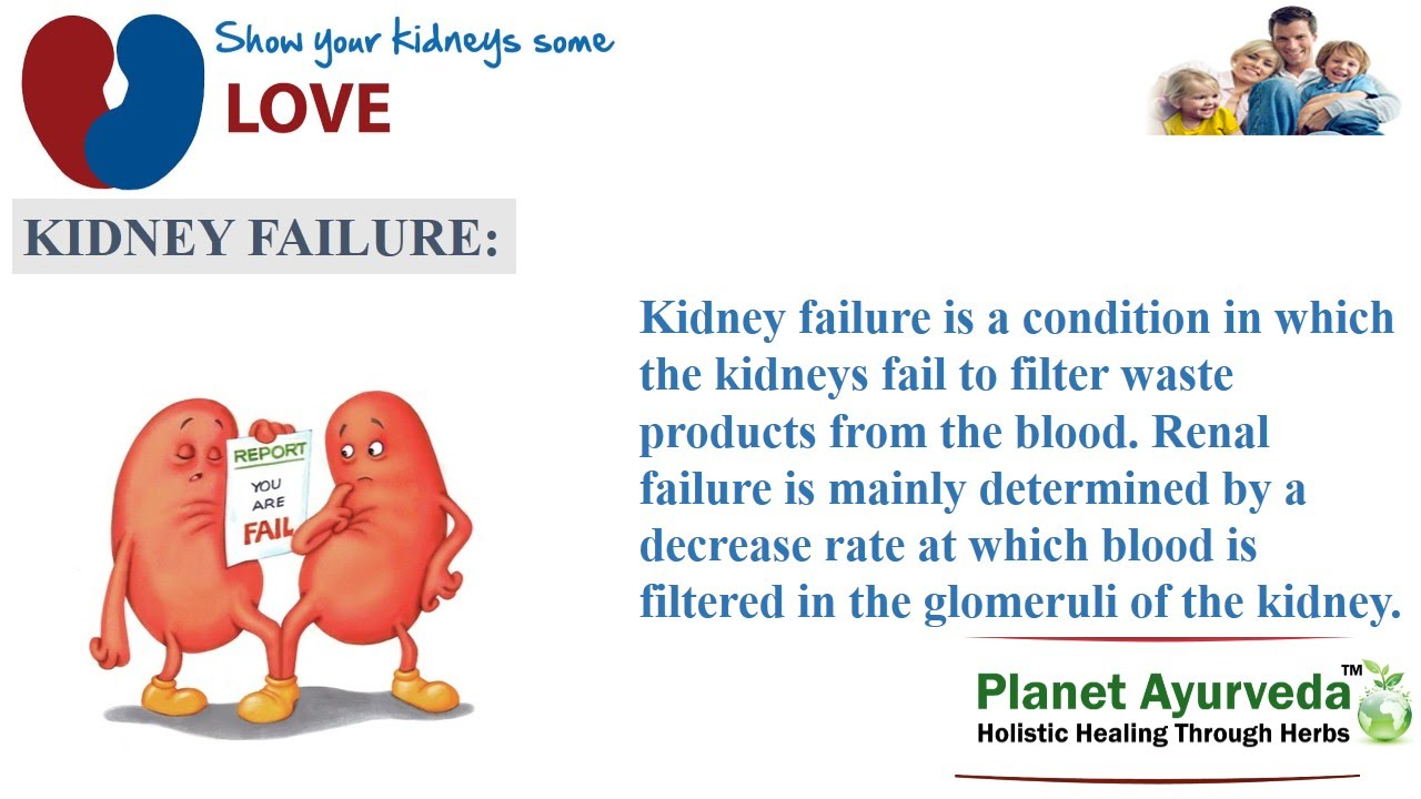 an effective treatment of kidney failure essay What is chronic kidney disease essay risk factors, symptoms and treatment are discussed chronic kidney disease is lead to permanent loss of kidney function.