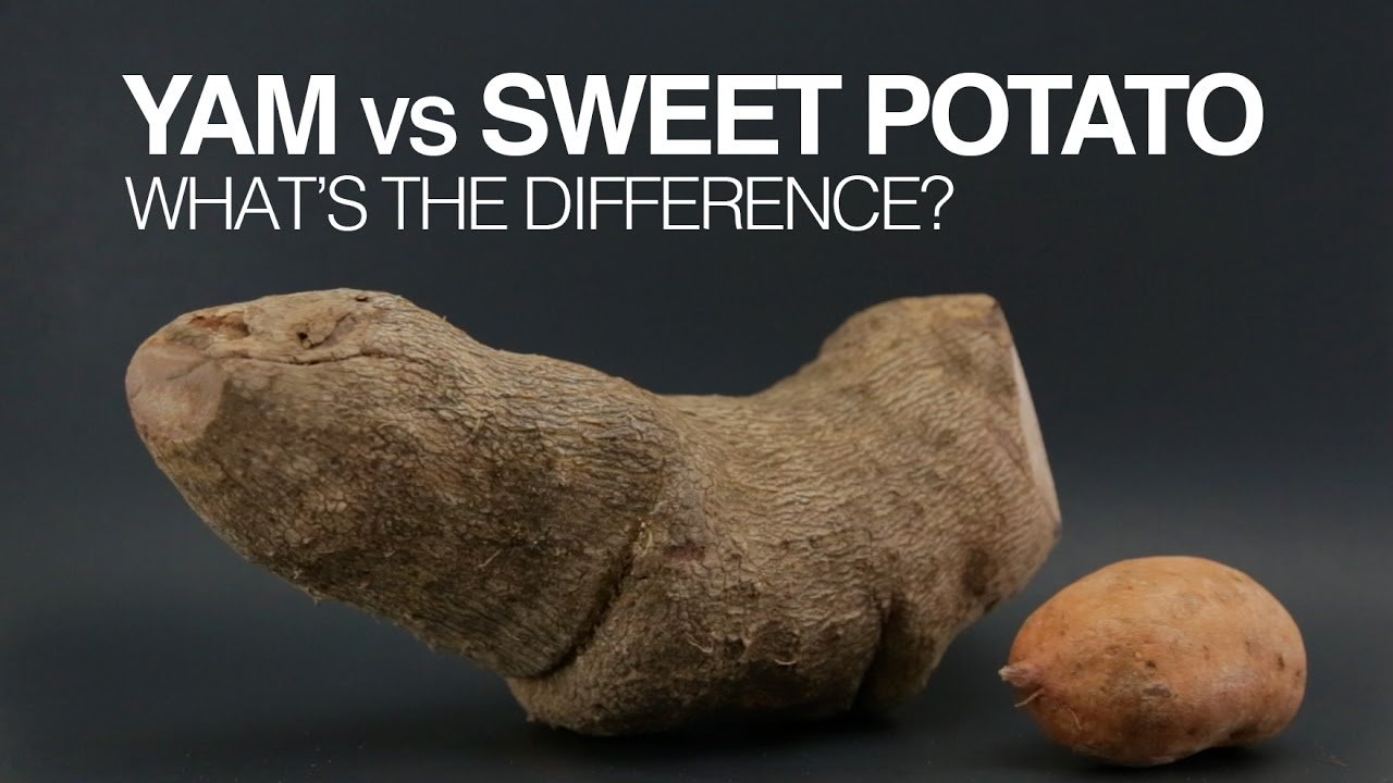 difference between sweet potatoes and yams yams vs sweet potatoes what s the difference 12952