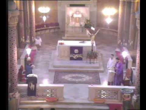 Live stream di Parrocchia San Giuseppe