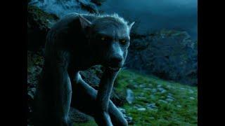 Harry Potter and the Prisoner of Azkaban Professor Lupin turns into werewolf in HINDI