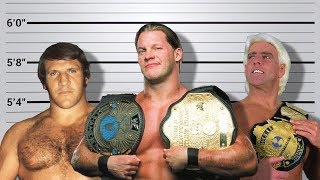 10 Shortest WWE Champions Ever