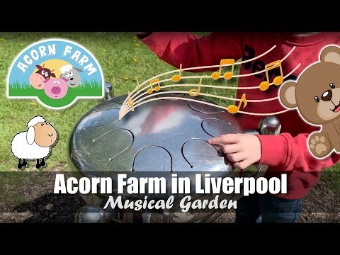 Acorn Farm In Liverpool | Musical Garden | Friendly Farm Animals