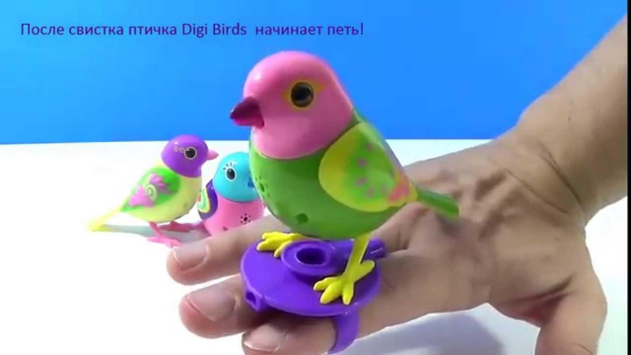 13 дек 2015. Digifriends — это интерактивные музыкальные игрушки для детей от 3-х лет. Птички digibirds, а теперь ещё и совы digiowls, и пингвины digipenguins. Все персонажи могут петь как соло, так и хором, при этом двигаться в такт мелодии. Digifriends синхронизируются друг с другом, могут.