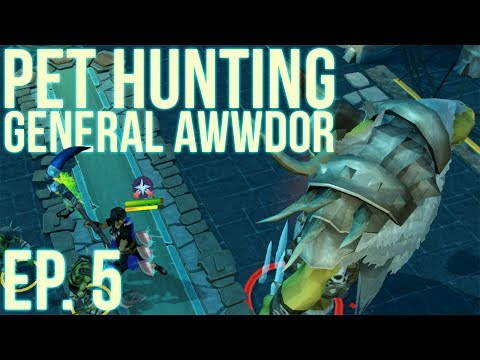RuneScape 3: Loot from 2,000 Bandos Kills - Pet Hunting #5