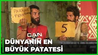 Bil Bakalım 2. Kısım - Survivor 60. Bölüm