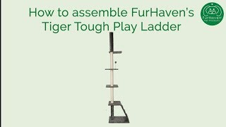 Tiger Tough Cat Ladder Playground How To Assemble Furhaven Pet Products Youtube