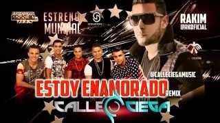 Calle Ciega ft  Rakim - Estoy Enamorado remix