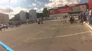 Донна, Тернополь, 08.09.2013 (Канис, ККУ)