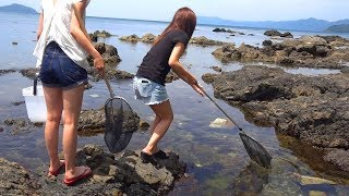 日本海でガサガサしたら・・・新種の生き物?
