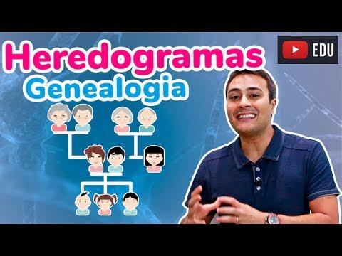 HEREDOGRAMA | GENEALOGIA | Prof. Paulo Jubilut