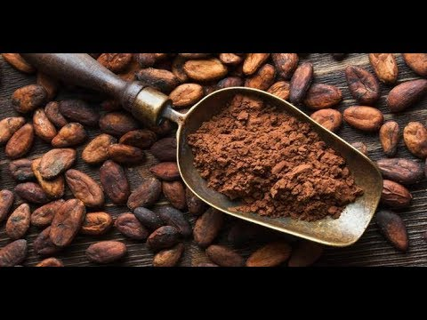Cacao as a medicine and the benefits of Cacao Ceremony