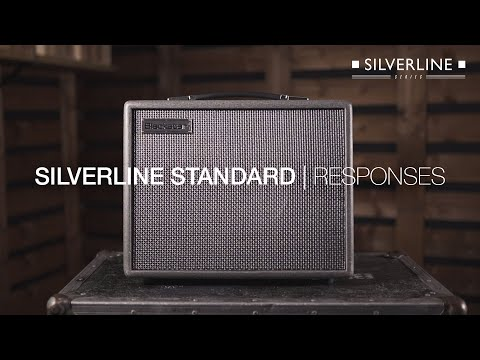 True Boutique Character, Tone and Response | Silverline Standard | Blackstar
