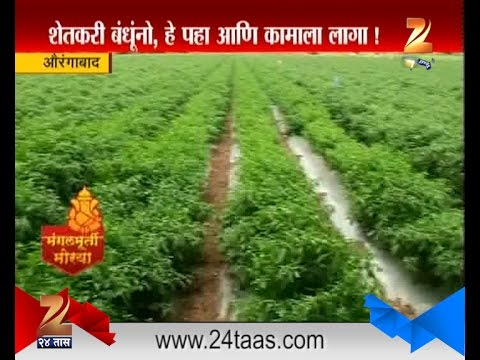 Auranagabad : Successful Farming Done By Farmer In Drought