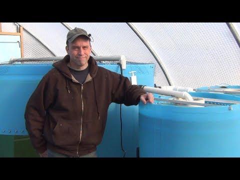 Big Aquaponic Greenhouse - Part 12 - Fish Tank And Plumbing