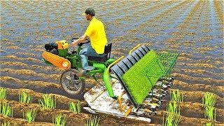 Развивающие и обучающие мультики - Трактор и Рисовая Ферма| Новые Мультфильмы про #машинки 2018