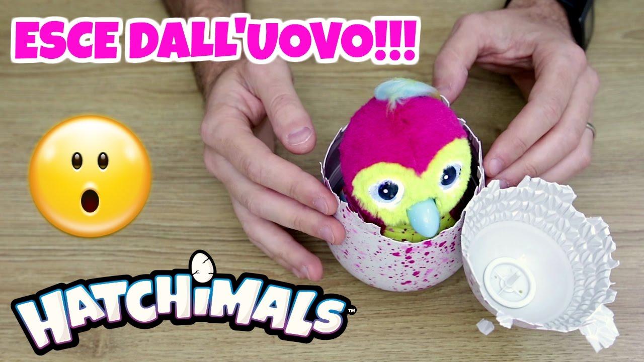 Incredibile apertura uova hatchimals si schiudono for Aprire le planimetrie con seminterrato