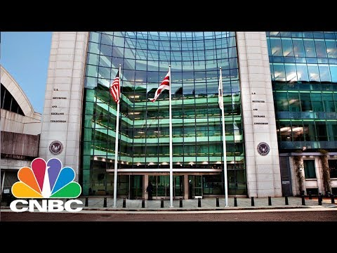 SEC Suspends Trading In Crypto Company Over Questions Into Provided Information | CNBC