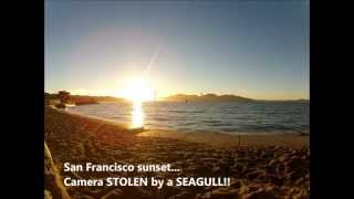 GoPro STOLEN by a SEAGULL!! - Unique San Francisco sunset... thumbnail