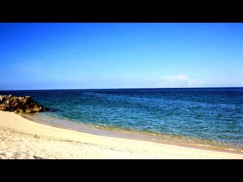 Bimini Bahamas Information
