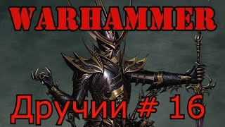 call of warhammer 1.6. Дручии 16 Мятежники