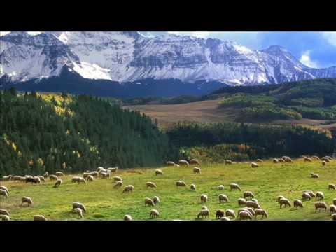 Psalm 23.  Pan jest Pasterzem moim...