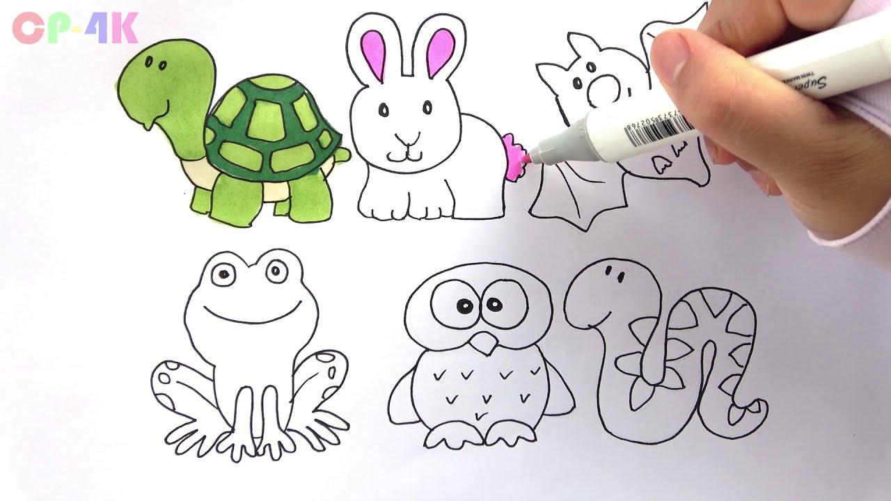Animales Para Colorear Cómo Dibujar Animales Tortuga Lindaconejo Murciélago Rana Serpiente Niños Dibujo Cp 4k 0625 Hd